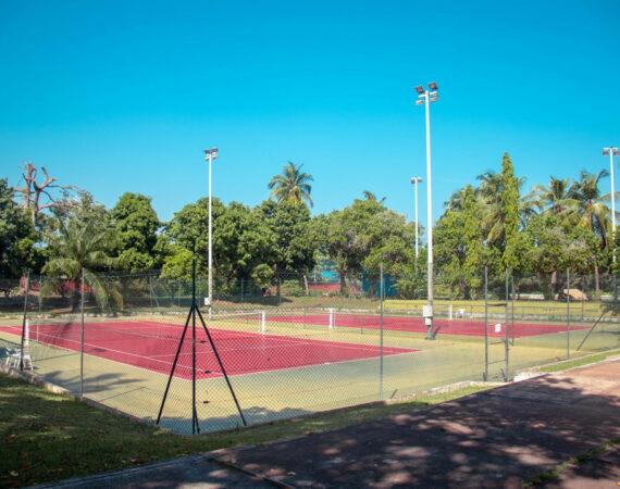 tennis sarakawa